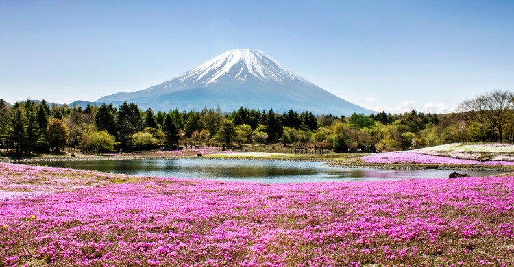 Ultra-Trail du mont Fuji au Japon - Istock