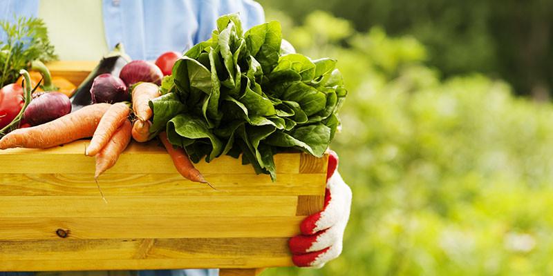 Légumes frais (iStock)