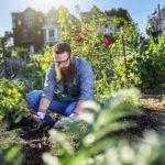 5 avantages à consommer des produits saisonniers